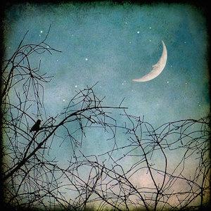 Capricorn New Moon Winter Solstice